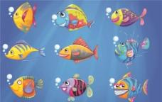 观赏鱼图片