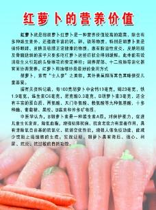 红萝卜的营养价值图片