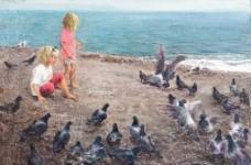 与鸽同乐图片
