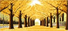 黄金满地 风景图片