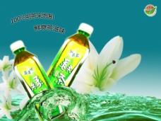 康师傅绿茶海报图片