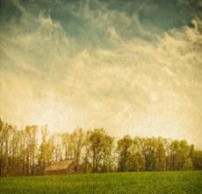 复古绿色自然背景图片
