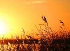 日落背景图片