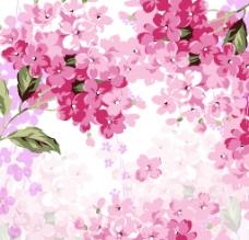 鲜花无框画图片