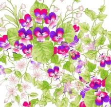 高清鲜花图片