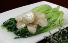 蘑菇菜心图片