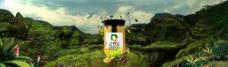 丁氏蜂蜜广告图图片