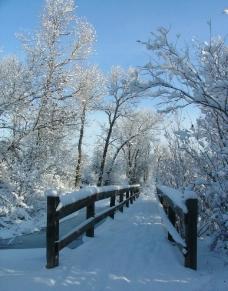 冬日雪景图片