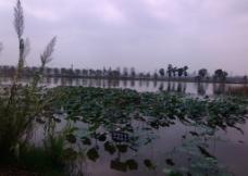 湖水景观图片