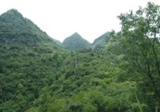 蘑菇石远景图片