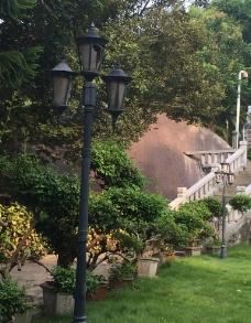 别墅花园 花园  台阶 图片