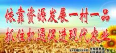 农村标语图片