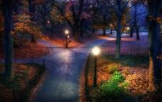公园夜景图片
