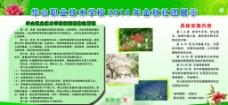 植物社图片