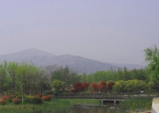 园林景色图片