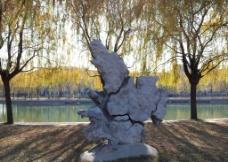 湖边的柳树图片