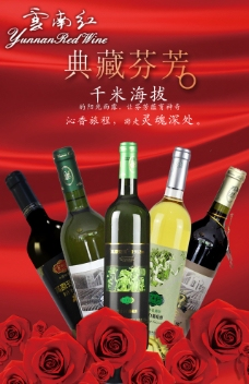 云南红葡萄酒广告