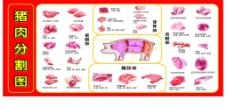 猪肉分割高清图片