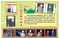 莲花酒店明星宣传版图片