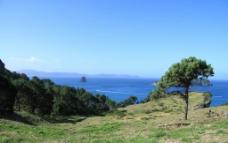 新西兰海滨自然风景图片