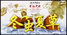 冬虫夏草海报