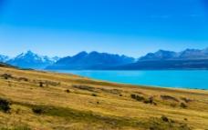 新西兰  特卡波湖图片