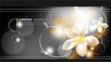 幻彩曲线及花朵背景图片