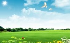 天空草地风景图片