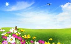 花卉草地风景图片