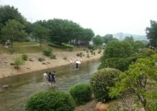 河道戏水图片