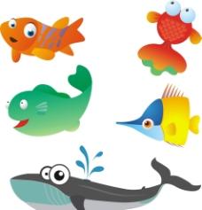 海洋 鱼类图片