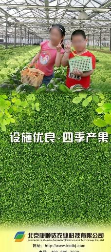 休闲农业展板图片