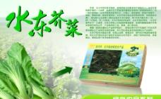 芥菜农产品灯箱片图片