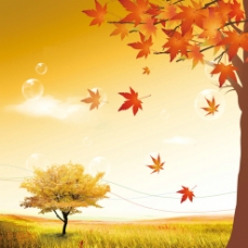 秋天封面图片