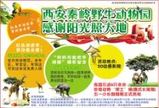 动物园宣传广告图片