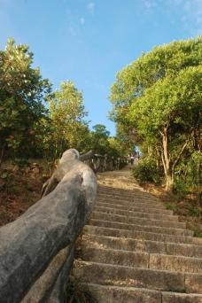梧桐山图片