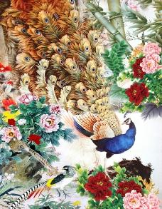 牡丹孔雀图片