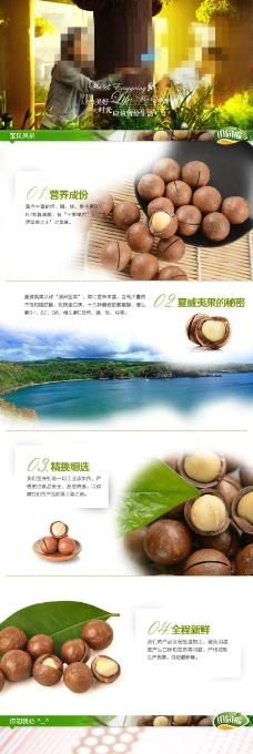 夏威夷果淘宝网页素材下载