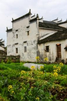婺源漳村图片