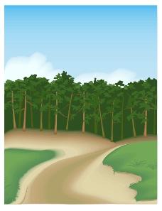 小路树林背景广告设计素材ai源文件下载