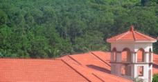 红房子图片