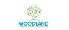 树logo图片