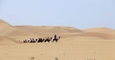 骆驼出山图片