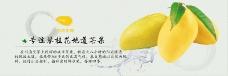 淘宝攀枝花芒果首页海报