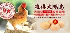 难得大鸡惠 淘宝农产品预售海报