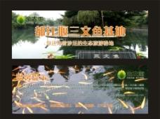 三文鱼卡片图片