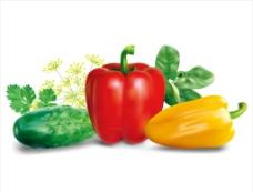 逼真新鲜蔬菜素材图片