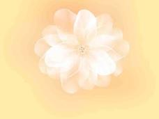 分层花朵素材