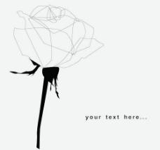 手绘素雅玫瑰花