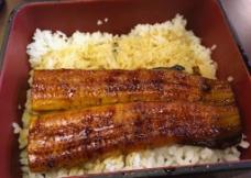 鳗鱼饭图片